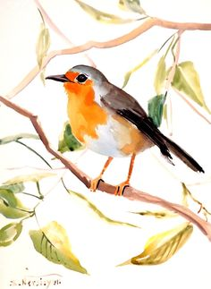 Robin original watercolor painting 12 X 9 in by ORIGINALONLY, $24.00