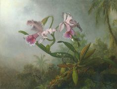 Paintings from american painter Martin Johnson Heade // Orchids (orchidée, orquidea) and hummingbirds ( colibris, picaflor ) fr. Art Floral, Martin Johnson Heade, Hudson River School, Presents For Girls, New York Art, National Gallery Of Art, American Artists, American Realism, Landscape Paintings