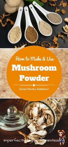 Powder - How to Make and Use It in Your Kitchen How to Make and Use Mushroom Powder - a Wonderful Addition to Your Pantry and Recipes!How to Make and Use Mushroom Powder - a Wonderful Addition to Your Pantry and Recipes! Dried Mushrooms, Growing Mushrooms, Stuffed Mushrooms, Real Food Recipes, Healthy Recipes, Drink Recipes, Jar Recipes, Kitchen Recipes, Kitchen Hacks