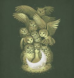 'owl and Moon' by Ben Chen