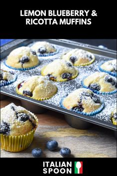 These light and fluffy muffins are made using creamy ricotta and bursting with lemon and blueberry flavour. Try cooking them for breakfast or afternoon tea today! Muffin Recipes, Baking Recipes, Cake Recipes, Dessert Recipes, Lemon Blueberry Muffins, Blue Berry Muffins, Lemon Recipes, Sweet Recipes, Afternoon Tea Recipes