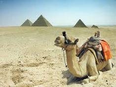 egipto - Buscar con Google