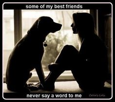 My best friend, never says a word to me :)