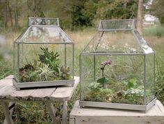 Glass Garden Atrium Terrariums - Set of 2 Sizes - *FREE DELIVERY*