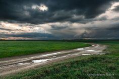 Abril, la luz se abre paso sobre el verde (2ª parte) ~ Fotografía Juanjo Mediavilla
