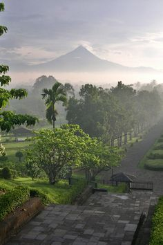 Merapi view from above Borobudur