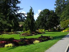 Take a bike ride, bring a picnic blanket and enjoy the day. One of the most beautiful spots ever. Stanley Park Vancouver, Vancouver Washington, Clark County, Road Bikes, British Columbia, Picnic Blanket, Iphone Wallpaper, Places To Go, Most Beautiful
