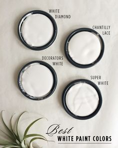best white paint color for walls and trim pinterest eggshell