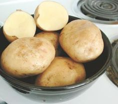 Yukon Gold Potatoes: Early-season 70-90 days. Yukon Gold is widely acclaimed as the star of the European-type golden-fleshed potatoes. Sporting a thin golden skin, it is renowned for its outstanding flavor and dry texture. Perfect any way you cook it. Makes lip-smacking potato pancakes. An excellent keeper, too.