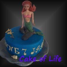 #zeemeermin #rotsen #zeesterren #dolfijn #taart #kinderfeest #verjaardag