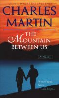 Two strangers meet by chance, at the Salt Lake City Airport, when they are both trying to fly home. And then the unthinkable happens. The pilot has a heart attack mid-flight and the plane crashes into the High Uintas Wilderness. As the days on the mountains become weeks, their survival become increasingly perilous. How will they make it out of the wilderness and if they do, how will this experience change them forever?