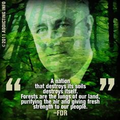 "A Nation that destroys its soils, destroys itself.  Forests are the lungs of our land, purifying the air and giving fresh strength to our people.""  -  Franklin D. Roosevelt  FDR"