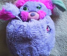 Popples, i had one when i was a kid and i loved it so much!