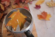 This looks like the best idea I have found for leaves so far! Must try!!- how to preserve leaves in wax