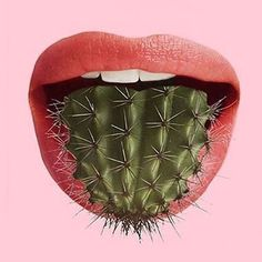 got your tongue ? : cactus got your tongue ?cactus got your tongue ? : cactus got your tongue ? Conceptual Art, Surreal Art, Photomontage, Collages, Art Du Collage, Cactus Art, Cactus Painting, Painting Art, Paintings