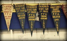 Vintage state fair prize pennants hanging behind the Holsteins.     Get incredible deals on camera  equipment for the photographer in your life this Christmas.  http://www.amazon.com/Camera-Photo-Film-Canon-Sony/b/?_encoding=UTF8=1789=390957=ur2