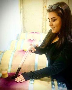 pursuing your passion - Katie DeSouza - Casanel Winery VA