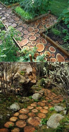 Build a log pathway by wood