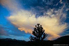 2013 Verano tardío en P. N. Conguillío by OUTDOORSTV, via Flickr