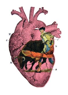 Items similar to Screenprint, Heart and Matador (Pink) on Etsy Collages, Collage Art, Heart Illustration, Photoshop, Anatomical Heart, Human Heart, Anatomy Art, Heart Art, Graphic Design Inspiration