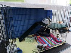Dog Crate to bunny cage
