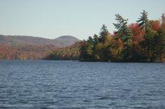 Azure in Fall Attire