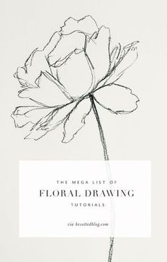 mega list of floral drawing tutorials - Besotted A mega list of floral drawing tutorials over resources for supplies, tutorials, books and classes!:A mega list of floral drawing tutorials over resources for supplies, tutorials, books and classes! Flower Drawing Tutorials, Flower Sketches, Art Tutorials, Flower Drawings, Rose Pencil Sketch, Roses Drawing Tutorial, Botanical Drawings, Doodle Drawing, Drawing Sketches
