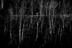 Fotografía en blanco y negro fotos en blanco y negro por Fotarte