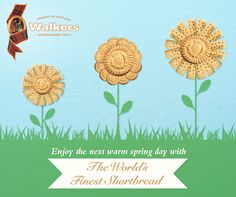 Enjoy Walkers Shortbread all spring and summer long!