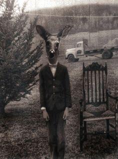 (Dear Deerboy on the Farm | Kysha Townsand)