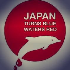 TAIJI JAPAN  THE FAROES ISLANDS SLAUGHTER DOLPHINS  WHALES. Please help to stop them, otherwise they think nobody cares!