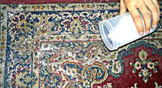 How to Deodorize Carpet With Baking Soda: 5 steps (with pictures)