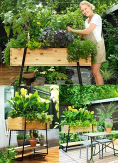 standing height planters