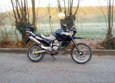 Black 650