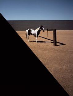 Ando Tadao