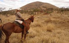 Süd-West Kilimanjaro 10 Tage/ 9 Nächte: Eine Kombination aus einem Makoa-Farm Reiturlaub und Wildbeobachtungen zu Pferd – das ist Afrika hautnah! Wir fuehren Sie bei diesem Programm auf ausgiebigen Ritten durch die malerisch besiedelte tropische Landschaft am Hang des Kilimanjaro entlang. Kontakte zu einheimischen Menschen bieten einzigartige Einblicke in die afrikanische Lebensart. Die anschliessende Reitsafari im Wildgebiet zeigt Ihnen die fantastische Wildnis, für die Ostafrika so…