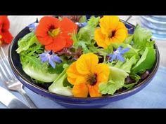 Fresh Summer Salad with Nasturtium jigsaw puzzle Backyard Vegetable Gardens, Veg Garden, Edible Garden, Sutton Seeds, Vegan Detox, Chicharrones, Dinner Is Served, Edible Flowers, Growing Vegetables