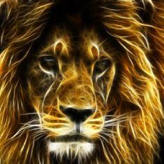 214 Best Electric Fractal Animals Images On Pinterest Fractals