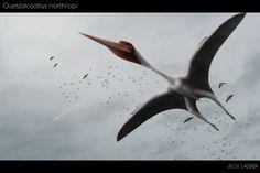 A migrating Quetzalcoatlus northopi gets company.