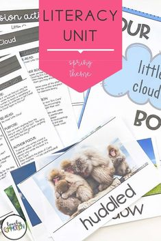 Literacy activities for preschoolers based around four popular read-alouds. This Literacy unit is based on a Spring theme. Third Grade Reading, Early Reading, Literacy Activities, Literacy Centers, Authors Purpose, Common Core Reading, Literature Circles, Vocabulary Cards, Spring Theme