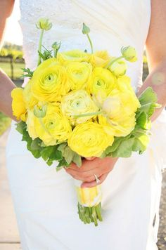 A cheery bridal bouquet is made of bright yellow ranunculus.