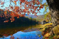 The Top 20 Blue Ridge Mountain Towns in GA & NC, including tips on the best things to do in each town and outdoor recreation opportunities nearby. Waterfalls In Georgia, Blue Ridge Scenic Railway, Cloudland Canyon, Gorges State Park, Blue Ridge Georgia, Summit View, North Carolina Mountains, National Parks Usa, Smoky Mountain National Park