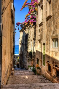Explorer the narrow alleys of Korcula Old Town and the beautiful bougainvilleas whose pink shades compliment the sky blue backdrop. #korcula #croatia