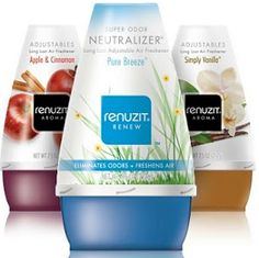 Buy 4 Renuzit Air Freshener Cones Get 2 FREE Coupon on http://hunt4freebies.com/coupons