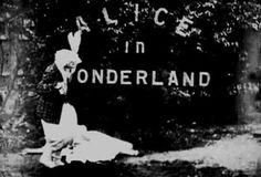 Alice In Wonderland Through the Looking Glass Down the Rabbit Hole