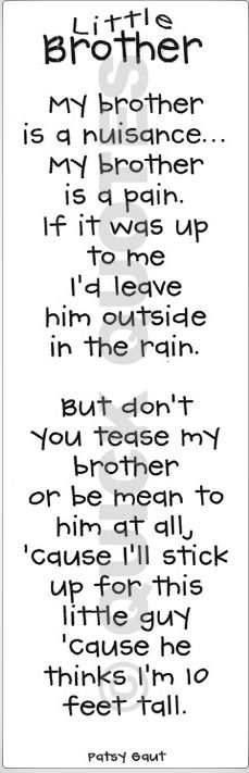 Slightly changed from the sign:  my brother is a nuisance, my brother is a pain, if it was up to me I'd leave him outside in the rain.  But don't you tease my brother, or be mean to him at all, cause I'll stick up for him, we're best friends of all!