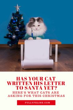 Has your cat written