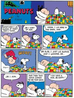 Charlie Brown and Snoopy❤️