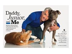 pit bulls on magazines - Google Search