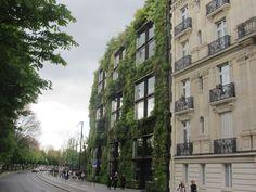 París, jardín vertical Marrakech, Gutter Garden, Athens, Vertical Gardens, London